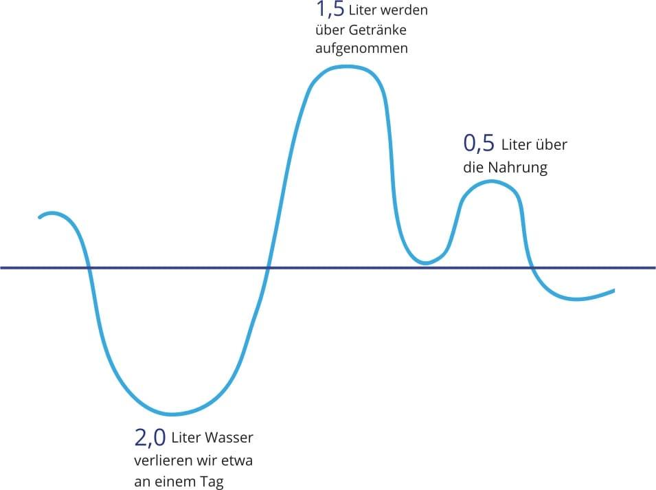 Infografik Wasser trinken: Wasserverlust und -ausgleich